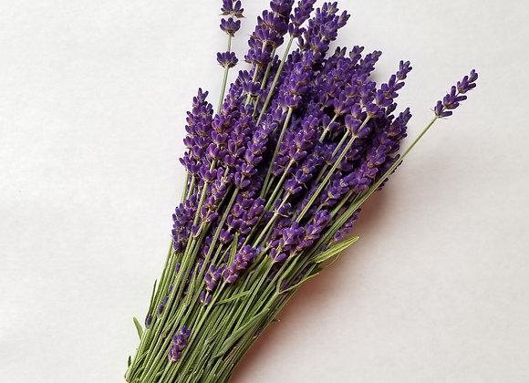 Lavender Bunch (dry)