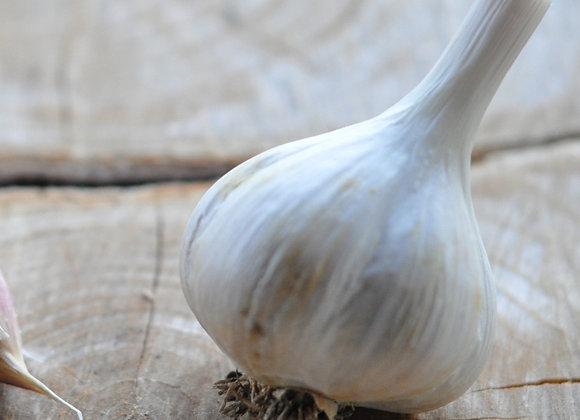 Garlic - Music