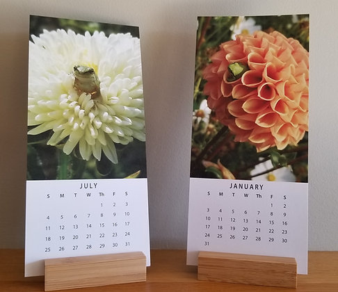 2021 Frogs in Flowers Calendar