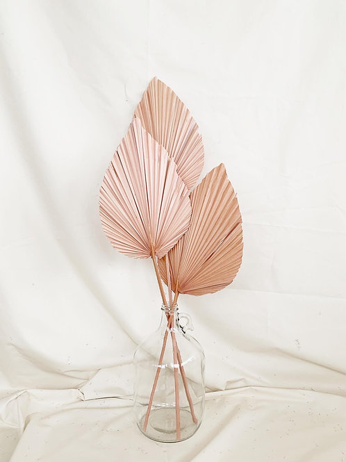 PALM LEAF SPEARS