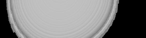 BRILHO%25201_edited_edited.png