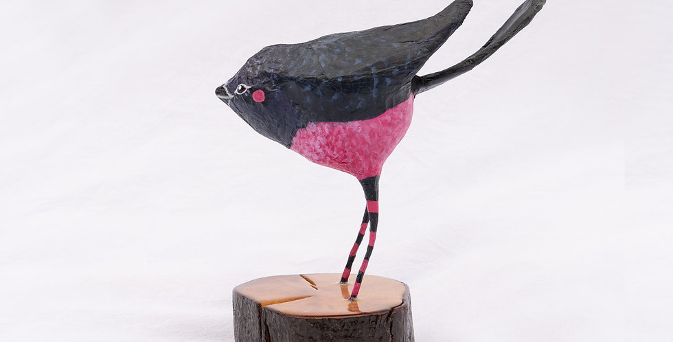 Pink Robin - Birds in strips -