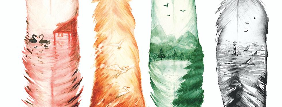 Feather of the world- Piume del mondo