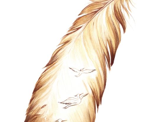 Heron feather - piuma d'irone