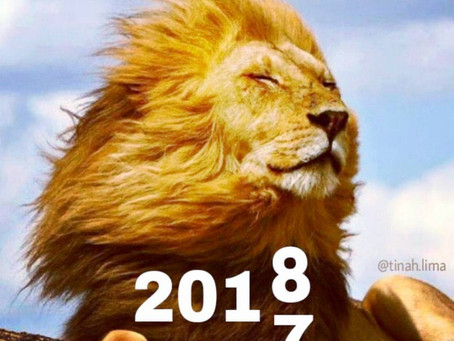 2018 o ano da Força no TARÔ