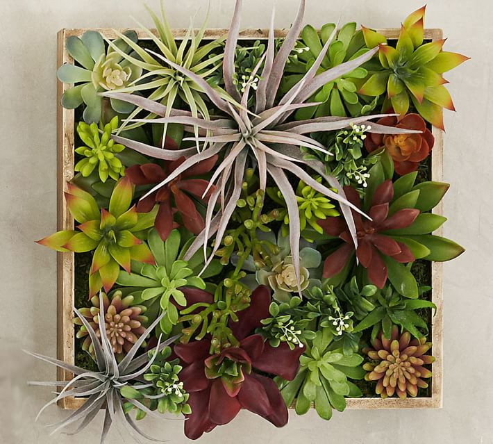 Succulent art in a wooden box, 3D