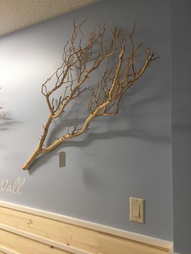 Eco Friendly interior design with modern flare