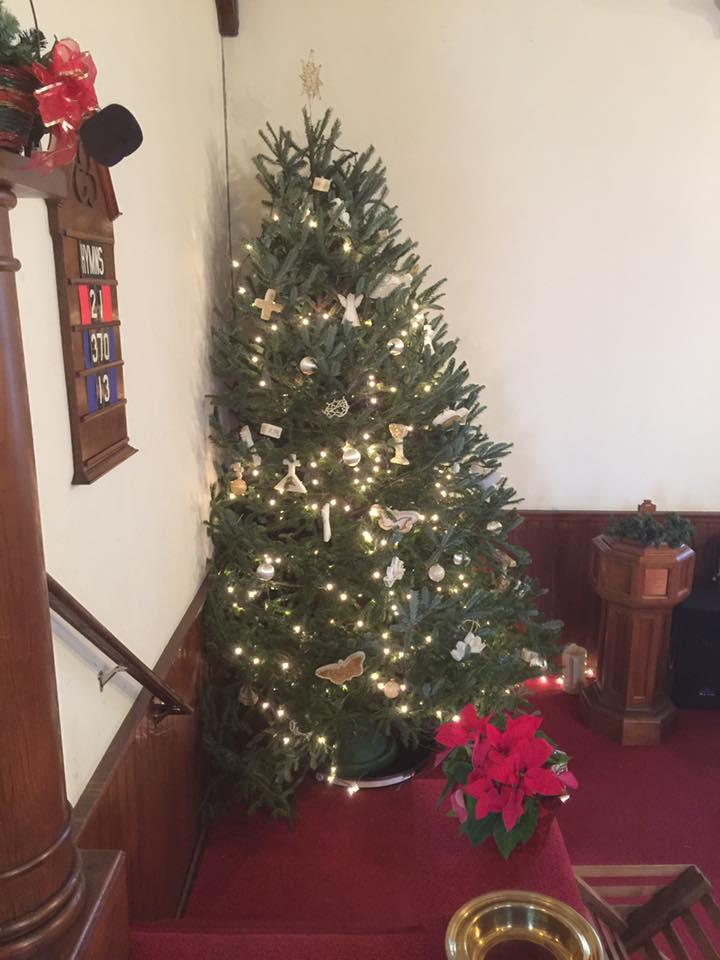 Christmas.Tree.2016