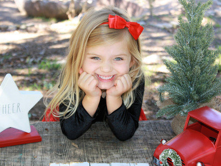 HOLIDAY Family Portraits Booking NOW!