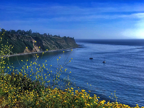 Palos Verdes Blue Ocean view (Sailboats)