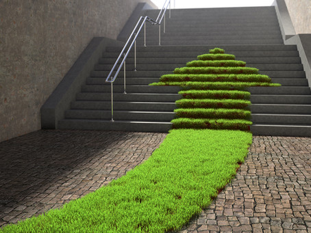 Why the biggest obstacle to addressing sustainability is the economic growth mindset