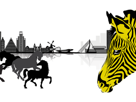Forget Unicorns. PropTech Zebras are the future!