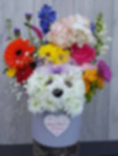 PRF - MOTHERS DAY - DOG IN A HAT BOX - 2