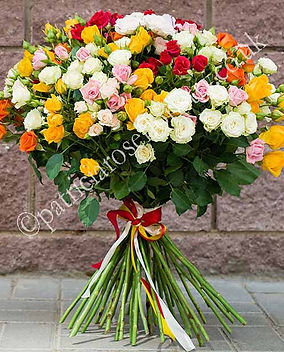 Mega Mix Roses.jpg