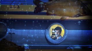 Square Yards - Submarine
