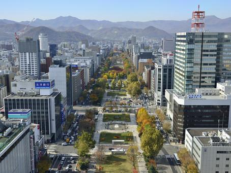 札幌スマートウェルネスシティについて