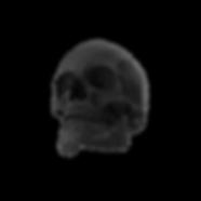 Rubber Skull.K02.2k.png
