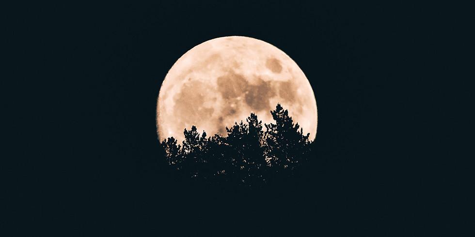 Full Moon Gypsy Drum Circle