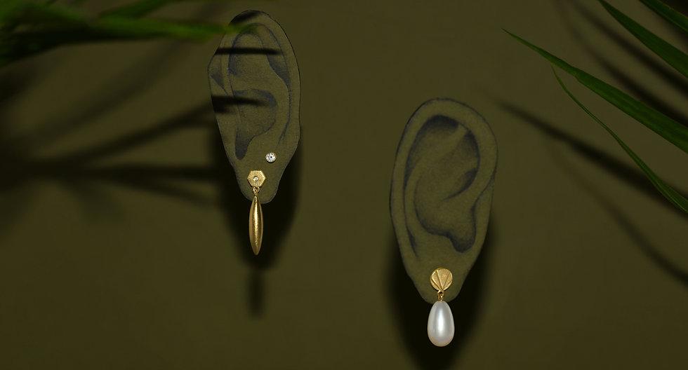 banner ears.jpg