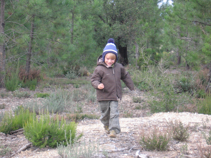 Montessori, une pédagogie connectée à la Nature.
