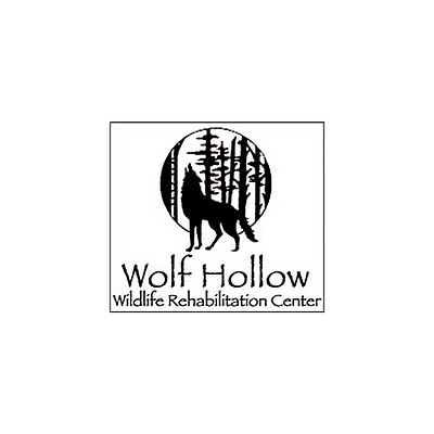 Logo7_wolf.png