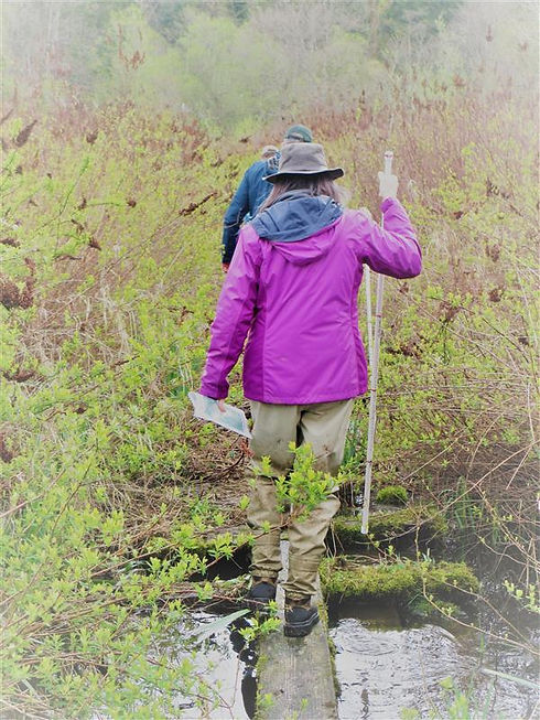 Skagit Land Trust Walking person.jpg