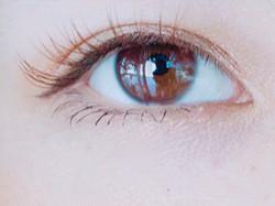 color lash