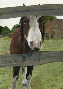 Nosy Horse.jpg