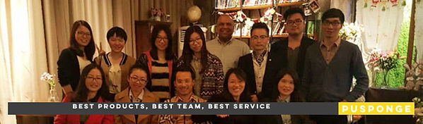 PUSPONGE Service Team