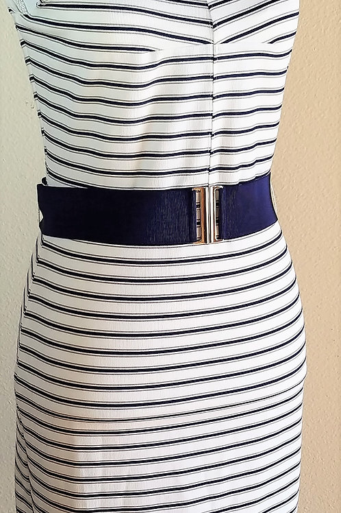 Ann Taylor Dress, Size 2P    SOLD