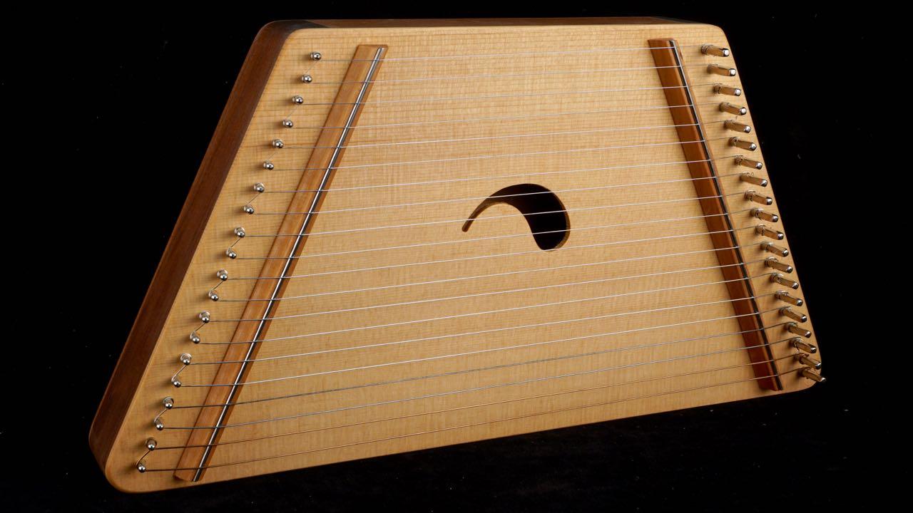 #3 - 20 String - $120