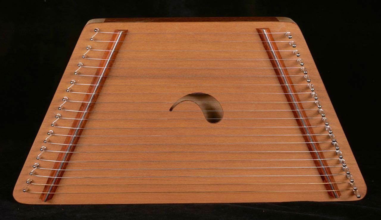 #4 - 20 String - $120