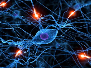 2 Powerful Nutrients for Boosting Brain Function - and Healing the Brain & Nervous System