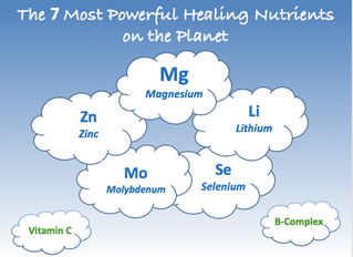 The 7 Most Powerful Healing Nutrients on the Planet