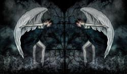 The Hosts of Seraphim