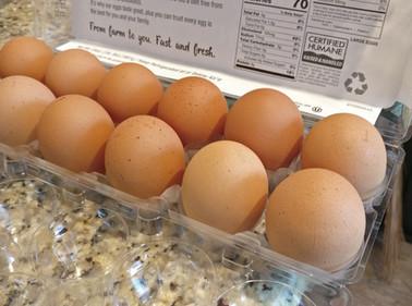 Thanks God for the eggs.