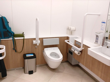 Japanese Public Restrooms: one of the things that perplex me in Japan.