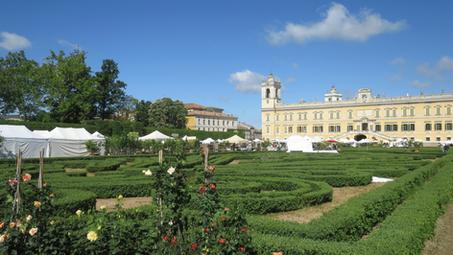 Parma e la Reggia di Colorno. Piacenza e Castel'Arquato