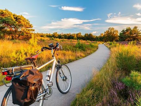 Langhe: Ecoturismo con le E-bike 2 giorni