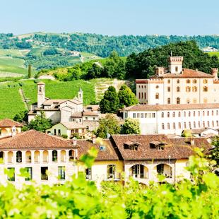 Le Langhe: Alba, Asti, la Via dei Vini 3 giorni
