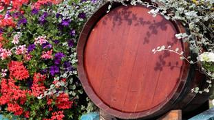 Festa del Vino a Beaujolais, Lione e Macon 4 giorni
