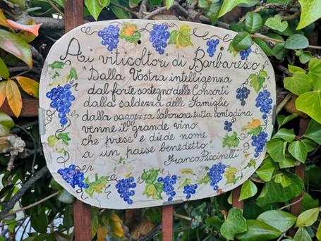 Langhe: antichi borghi di Neive e Barbaresco