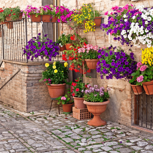Umbria Borghi Medievali: Perugia Spello Gubbio 3 giorni