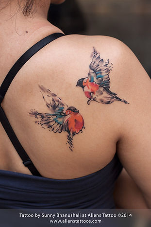 Colourful Birds Tattoo