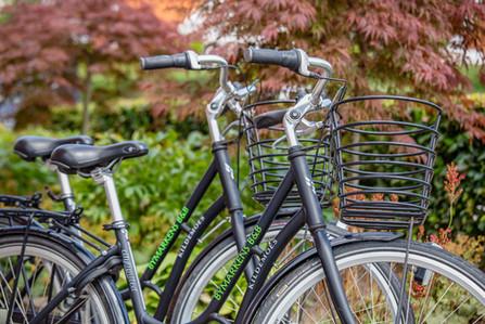 Udlejningscykler Rental bicycles