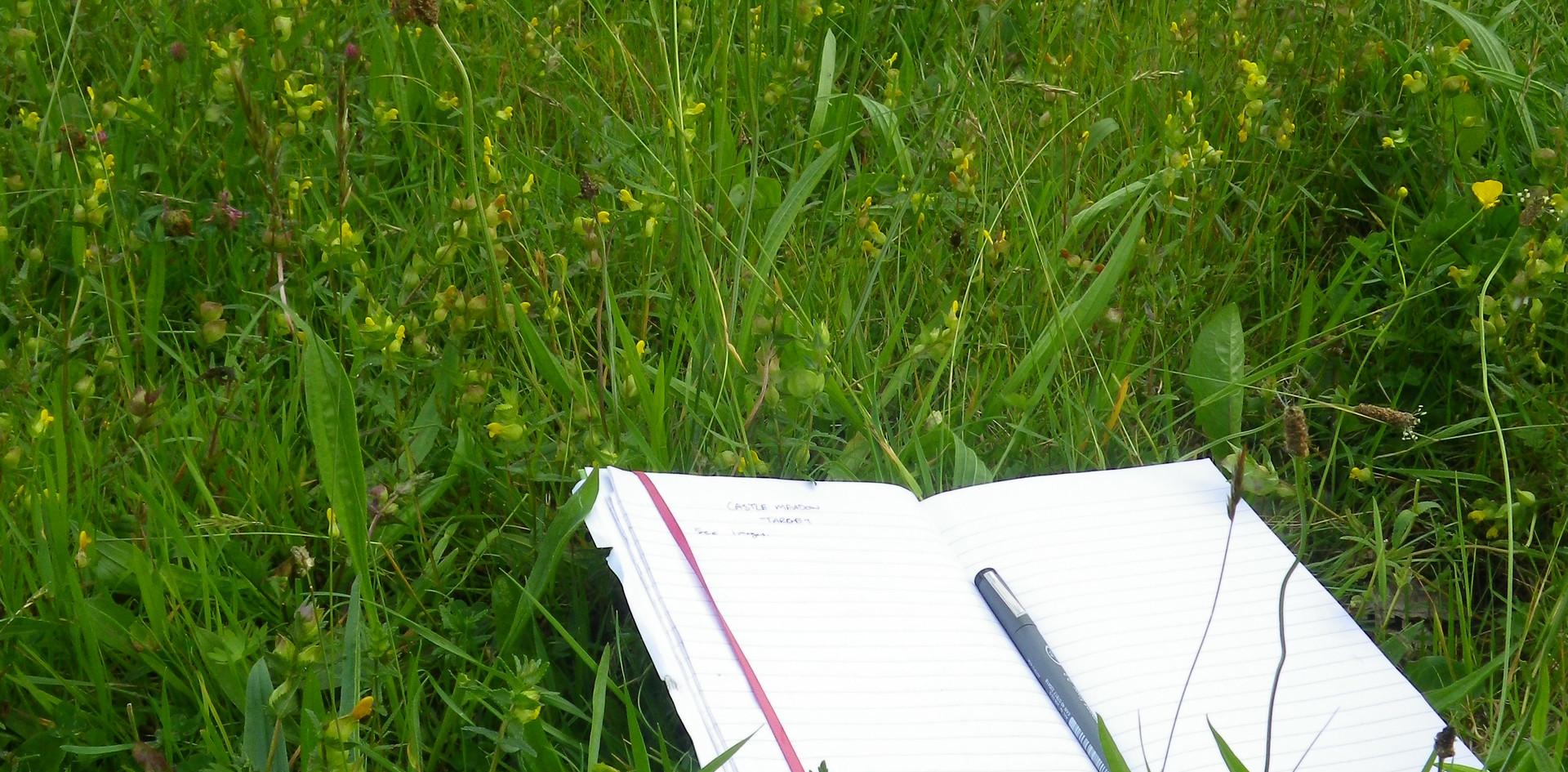 Condition assesment in grassland habitats