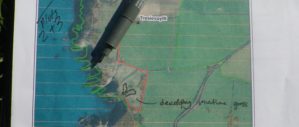 Habitat mapping of maritime heath and grassland