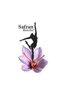 logo safran.jpg