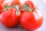 平凡のソース トマト