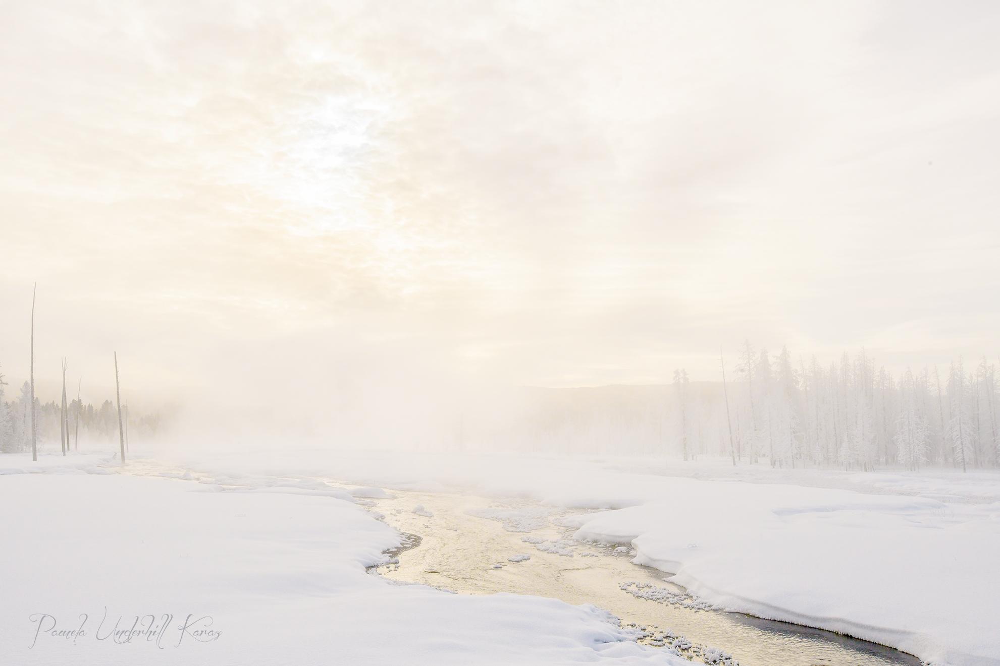 Landscape 5678